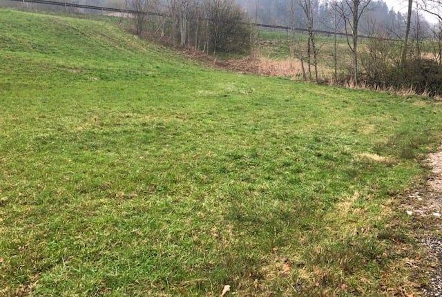 Landwirtschaftliche Fläche in Siegsdorf zu verkaufen (Chiemgau)